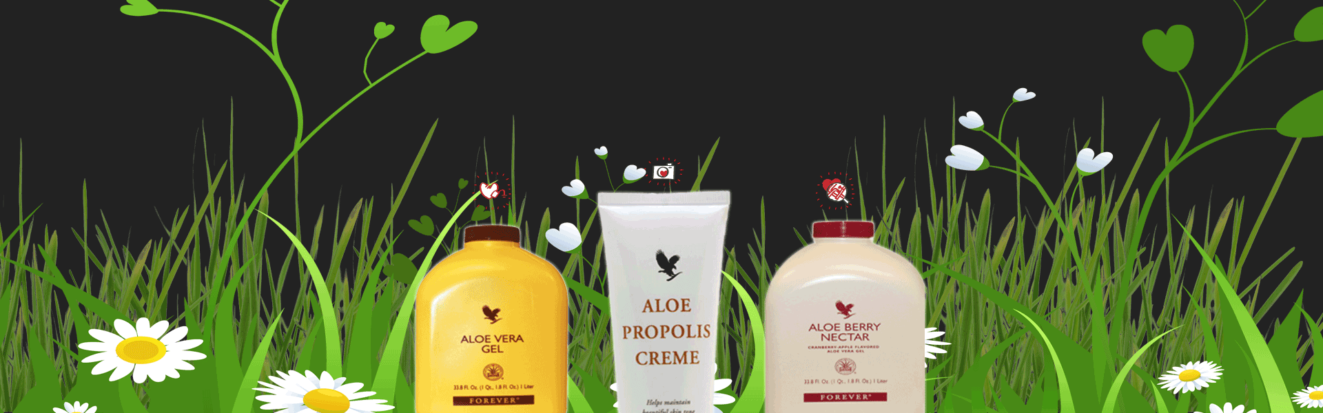 Aloe Vera products from Aloe-Herbal.co.uk